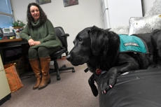 One doctor, six counselors and a therapy dog help Denver students beat drug addiction